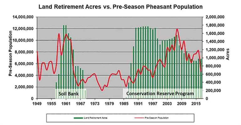 Graphs illustrating both pheasant numbers and the number of acres of retired lands shows a clear correlation between conservation habitat and pheasant populations. (Graphic/South Dakota Game, Fish and Parks)