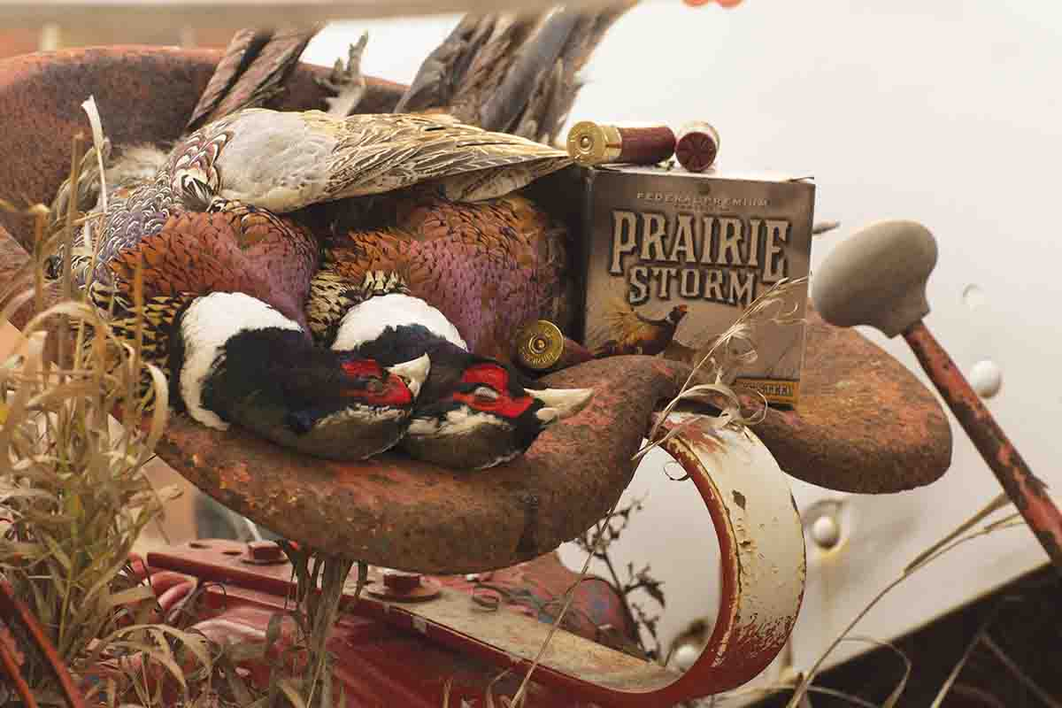 "Since 1998, when Federal Ammunition's ""on-the-box"" royalty began, hunters have supported Pheasants Forever by purchasing over 50 million rounds of shells. (Photo/Pheasants Forever)"