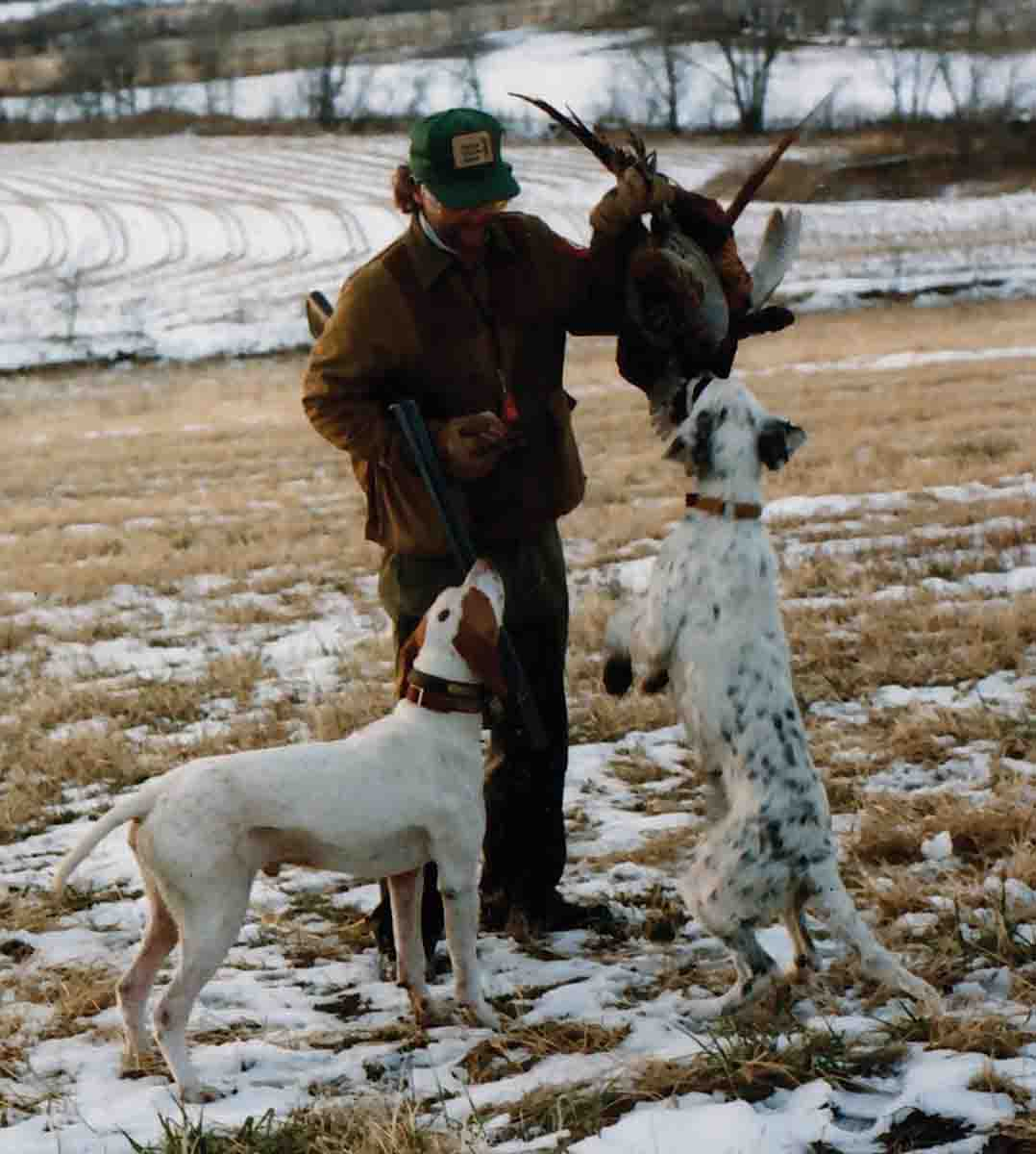 How George Hamilton's eyes did shine whenever he described what was one of the great adventures in his life – the marvel of real bird dogs that knew their business and pheasants in numbers that no Ohio farm boy could have ever imagined. (Photo/Nancy Johnson)
