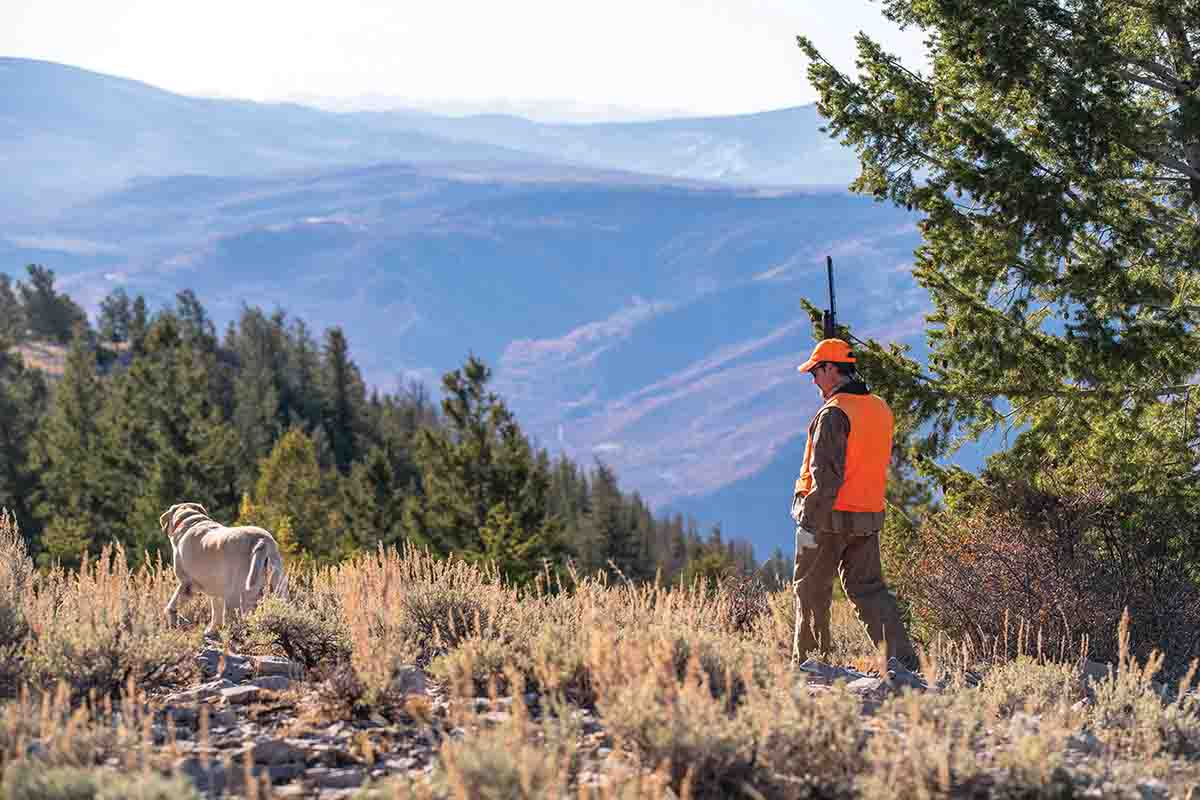 Blue grouse use high country ridges to escape hunters and hounds. (Photo/Nolan Dahlberg @dahlbergdigital)