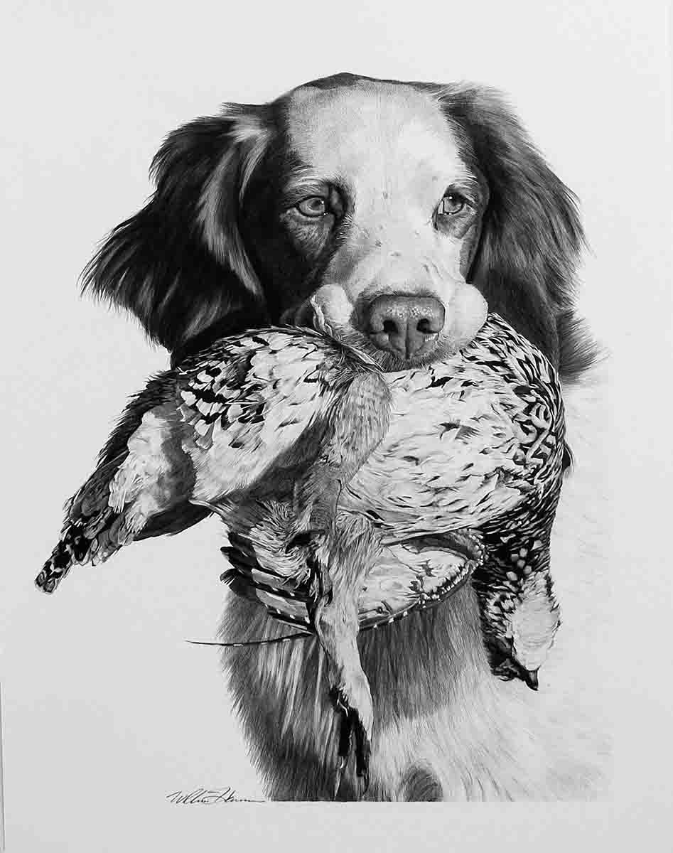 "Charlie: ""A Brittany with a really white face with a sharp-tailed grouse in his mouth. The picture from photographer Jim McCann was an incredible shot! The dog has such character. I love his eyes and the lighting. I've always been very proud of this one. I love doing dog noses. To do them well takes a lot of work. They have texture to them, and they're often wet, so they're shiny. They're fun to do. This is one where the nose turned out really well."""