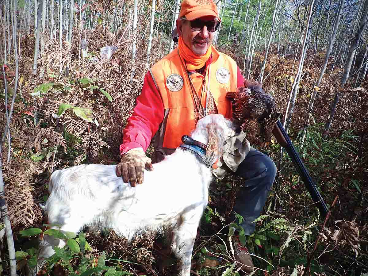 Bob DeMott shot his final Ohio ruffed grouse in 2009. Since then, if he has wanted a chance at a grouse, he's had to travel. Here, he and his Ryman-style English setter Kate celebrate the grouse he shot during his pandemic-shortened 2020 trip to the upper Great Lakes. (Photo/Tailfeather Communications, LLC.)